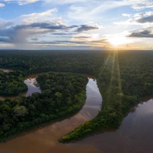 Ein Panorama über den peruanischen Regenwald und einen ihn durchkreuzenden Fluss.